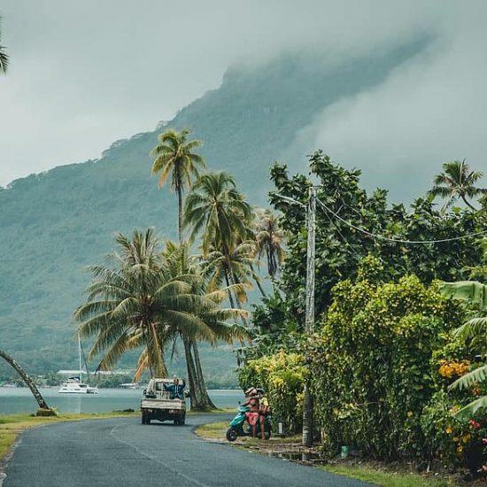Kava Culture - Vanuatu